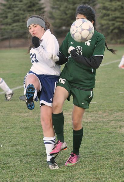Oak Lawn at Lemont girls soccer