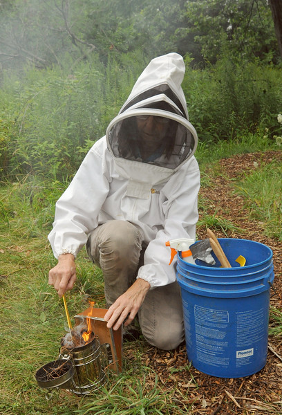 2nd year for Lyman Woods bees