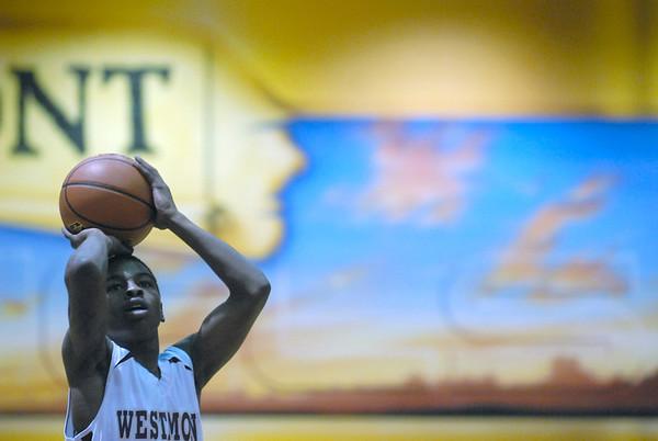 Lisle vs. Westmont boys hoops
