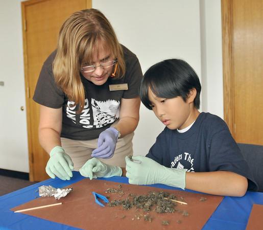 Westmont owl pellet dissection